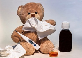 HPS monitors flu season