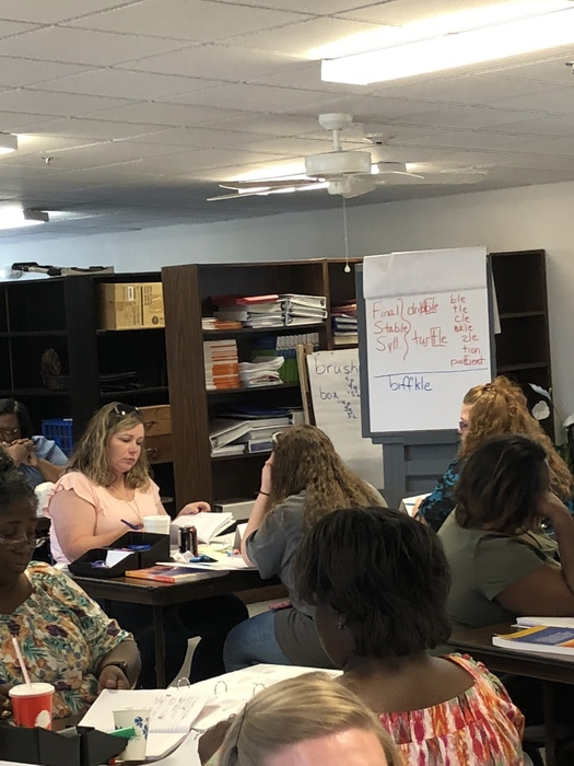 Clinton Primary teachers attend professional development